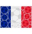 France soccer balls vector image vector image