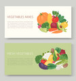 fresh eco vegetables banner vector image vector image