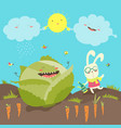 little rabbit and cabbage field vector image vector image