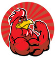 muscle rooster show his arm vector image vector image