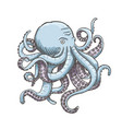 octopus vintage isolated on vector image vector image
