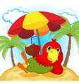 parrot resting on beach vector image vector image