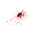 red blood splatters watercolor splatters vector image