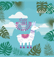 set of cute lamas floral ornament background vector image