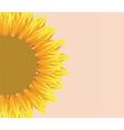 Sun flower with pattern