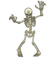 cartoon skeleton ghost vector image vector image