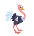 cute cartoon ostrich vector image vector image