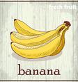 Hand drawing of banana Fresh fruit sketch vector image vector image