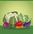 vegetables organic diet fresh ingredients vector image vector image