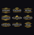 art deco label retro luxury geometric ornaments vector image vector image