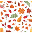 autumn harvest seamless pattern seasonal vector image vector image