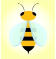 Bee with transparent wings vector image vector image