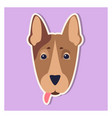 doggie face of bull terrier close-up cartoon image vector image