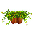 Flowers and plant on the log vector image vector image