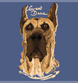 great dane painting poster vector image