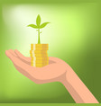 money with plant growing from coins in hand vector image vector image