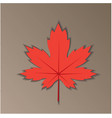 red autumn maple leaf on a gray background vector image