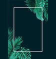 tropical forest with square frame on black backgro vector image vector image