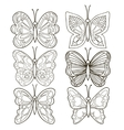 Various butterflies on white background vector image