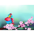A parrot at the branch of a tree with pink flowers vector image vector image