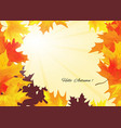 autumn background with rays of sun vector image