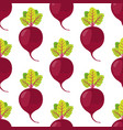 beetroot seamless pattern vegetarian food vector image vector image