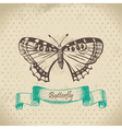 Butterfly hand drawn vector image vector image