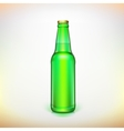 Glass beer green bottle Product packing vector image vector image
