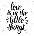love is in the little things hand drawn lettering vector image vector image