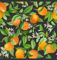 mandarin floral background seamless fruit vector image vector image
