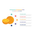 orange fruit infographic template concept with vector image vector image