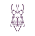 Outline Scarab Beetle Bug Insect vector image vector image