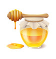 tasty honey in glass jar with honey dipper vector image