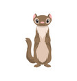 Cute otter animal cartoon character front view