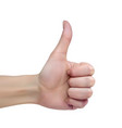 female hand on a white background shows thumb up vector image