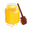honey in a jug vector image