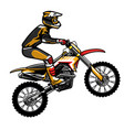 motocross rider jumping vector image vector image