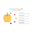 Pumpkin infographic template concept with five