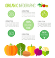 Organic infographic fresh vegetables vector image