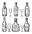 vintage hand drawing different bottles vector image