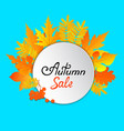 autumn sale hand painted text frame with yellow vector image vector image