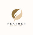 circle feather logo template vector image
