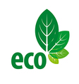 eco logo in the form of green leaves vector image vector image