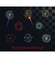 festive patterned firework isolated on the vector image