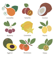 Fruits and berries vector image vector image