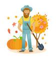 organic farm agriculture autumn agribusiness vector image