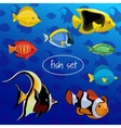 Set of colored different fish on a blue background vector image