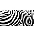zebra pattern texture repeating simple pattern vector image vector image
