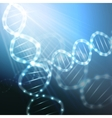 DNA molecule structure on a blue background vector image vector image