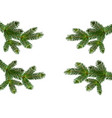 four green realistic branches of fir or pine close vector image vector image